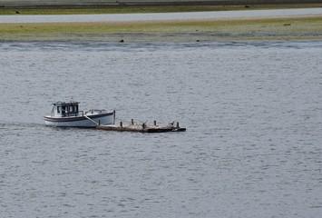 small boat pushing empty supply barge near the shoreline