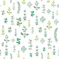 Kitchen spice herbs seamless background.