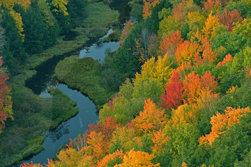 Aerial perspective of autumn forest and creek, Lake of the Clouds, Porcupine Mountains Wilderness State Park, Michigan's Upper Peninsula, USA Wall mural