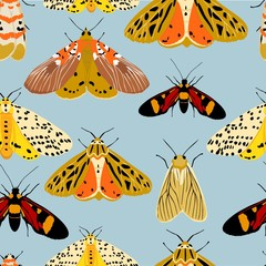 vector seamless pattern of multicolored butterflies and moths ,hand drawn picture