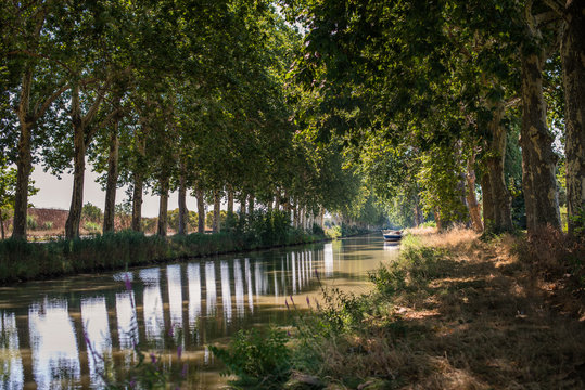 Boat on tree-lined Canal du Midi in south of France
