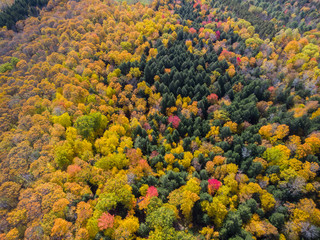 Dramatic fall foliage seen from the air near Quechee, Vermont.