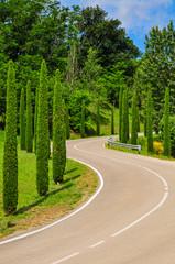 Landstrasse mit S - Kurve und umsäumt mit Zypressen