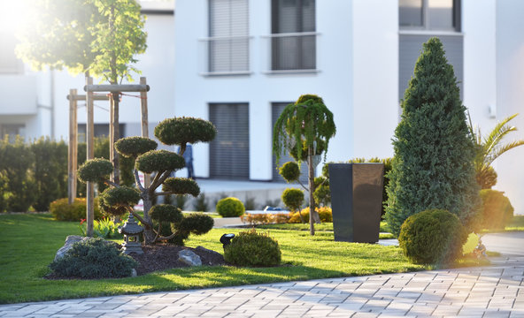 Beautiful modern flowerbed with coniferous bushes and a bonsai tree on the background of the exterior of a house in a European city