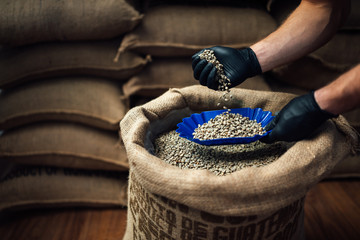 Papiers peints Café en grains side view of hand pouring coffee from a burlap bag into bowl for tasting, against the background of a warehouse.