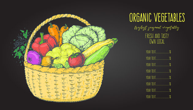 Harvest of vegetables in the basket. Hand drawn vector illustration. Engraved style.