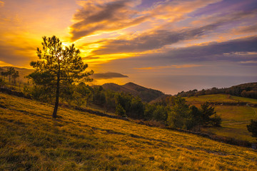 Poster Heuvel Yellow sunset on the mountain of Jaizkibel. Basque Country