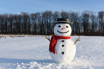 Funny snowman in stylish black hat and red scalf on snowy field. Merry Christmass and happy New Year!