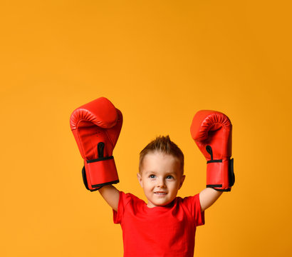 cute little boy with boxing gloves
