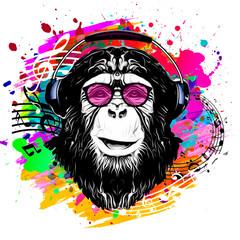 Monkey head black and color background, digital art