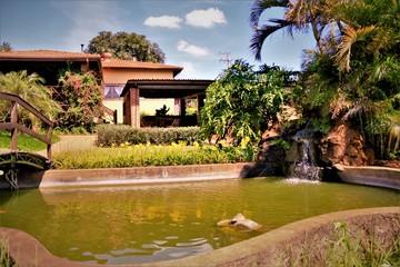Fototapeten Singapur pavilion in japanese garden
