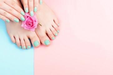 Foto op Textielframe Pedicure Female hands, legs with manicure and pedicure with flower on a pink, blue background, top view