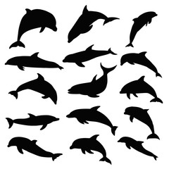 vector, isolated, dolphin silhouette, set