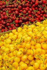 Fresh red and yellow cherries at a farmers market