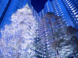 Fototapete - マンション街のクリスマスイルミネーション