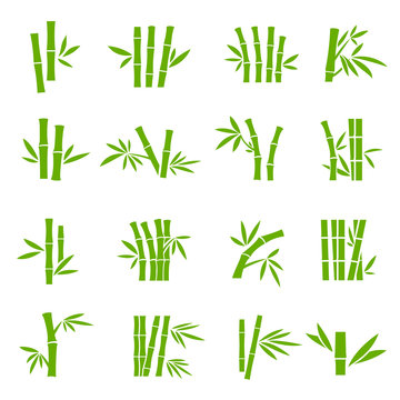 Bamboo tree branches color vector icons set