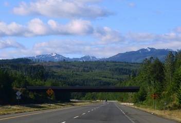 scenery along the Island highway on Vancouver Island, British Columbia Canada