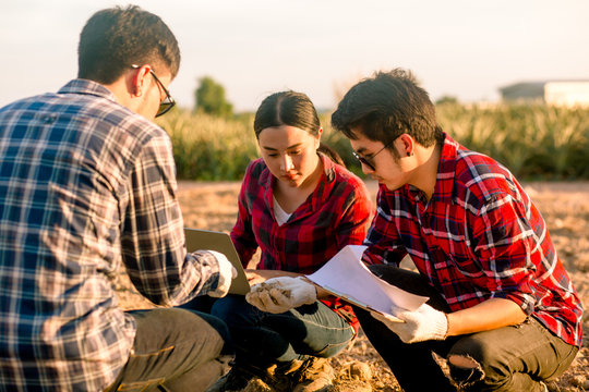 Researchers woman and man are checking the soil and collecting soil samples for planting.