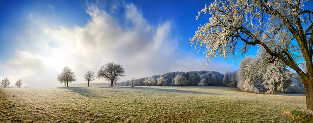 Magical winter panoramic landscape