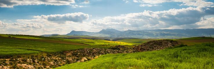 Panorama sunny green slopes of Ifrane at Moyen Atlas mountains, Morocco