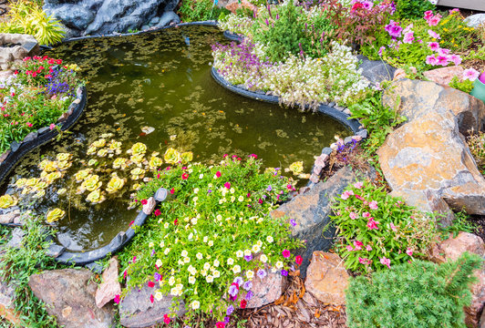 Beautiful flowers and plants with lilly pads in the pond water feature
