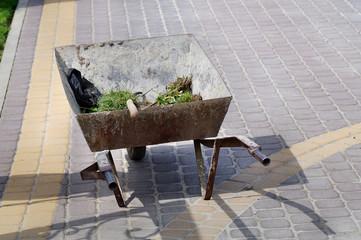Fototapeta prace w ogrodzie, wywóz taczką darni trawy oraz ziemi obraz