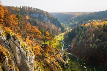 Obraz Ojcowski Park Narodowy, las, jesień, polska, małopolska - fototapety do salonu