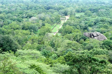 Spoed Foto op Canvas Olijf aerial view of mountain landscape