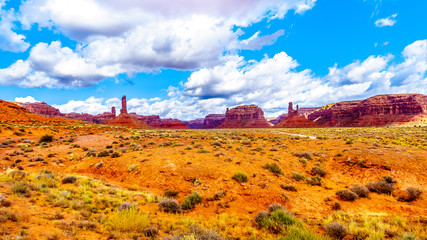 Foto op Aluminium The Red Sandstone Buttes and Pinnacles in the semi desert landscape in the Valley of the Gods State Park near Mexican Hat, Utah, United States