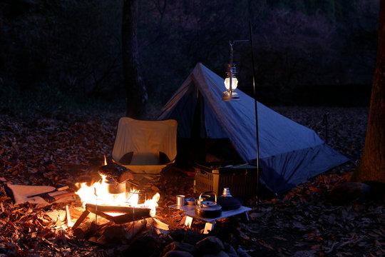 ソロキャンプ 夜の森