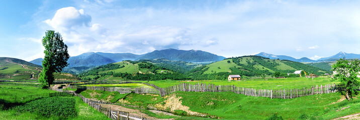 Wall Murals Blue sky Summer landscape in the Carpathians. Village Negrovets, Ukraine