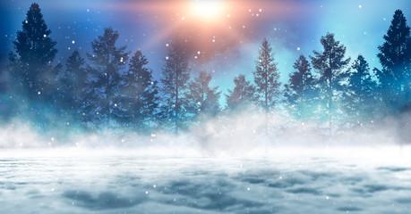 Fotomurales - Dark winter forest background at night. Snow, fog, moonlight. Dark abstract winter forest background.  Dark neon night background in the forest with moonlight. Night view, magic