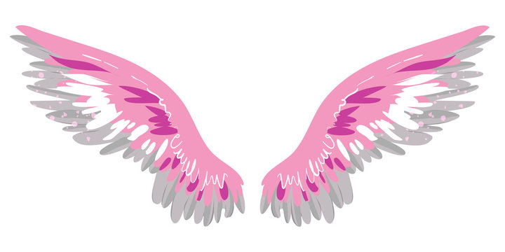 beautiful magic pink wings, freedom and hapiness, vector