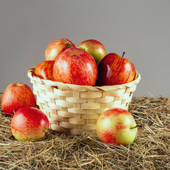 fresh red apples in a straw basket among hay on a gray background