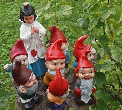 Cute garden Gnomes-snow White and the seven Dwarfs