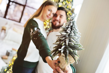 guy with a girl-a young couple in Christmas costumes hug and smile holding a small decorative Christmas tree in the snow on the background of Christmas lights.