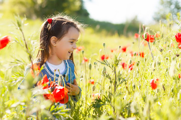 Little girl picking poppies in a field