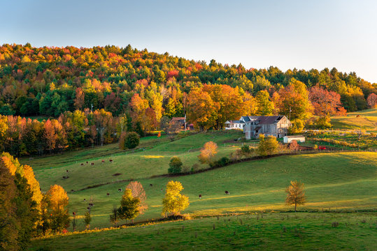 Farm and pastureland in a colourful autumnal landscape at sunset. Gorgeous autumn colours. Woodstock, VT, USA.