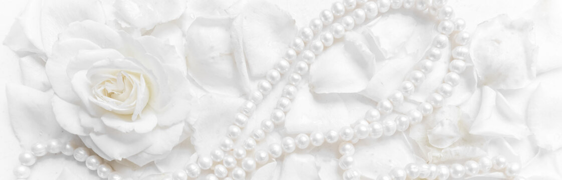 Beautiful white rose and pearl necklace on a background of petals. Ideal for greeting cards for wedding, birthday, Valentine's Day, Mother's Day