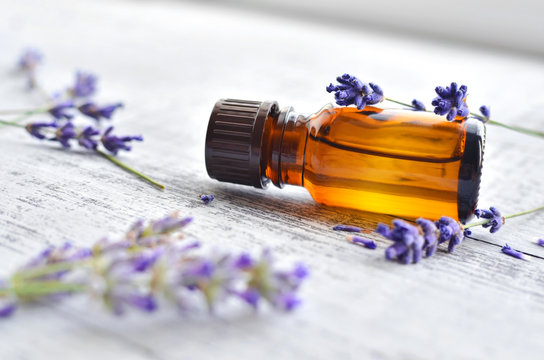 Organic lavender essential oil in dark glass transparent bottle and fresh lavender flowers on wooden background. Aromatherapy treatment.