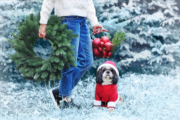 Close-up picture of woman's legs and a dog against winter trees