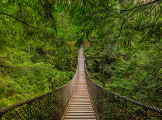 Spoed Foto op Canvas Brug Old suspension bridge above a river, among pine trees on a mountain in Lynn Canyon Park forest in Vancouver, Canada