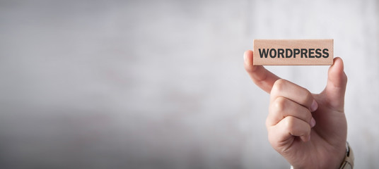 Man showing Wordpress text in wooden block.