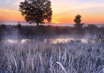Spoed Foto op Canvas Lavendel Misty frosty morning by the river. Grass in white hoarfrost and smoke on the water and the sun rising from the horizon. beautiful morning in nature.