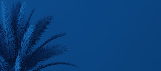 Obraz Unusual blue palm, Classic Blue color of the Year 2020, 3d illustration - fototapety do salonu