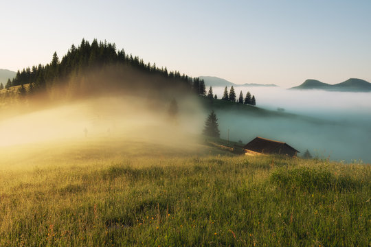 Beautiful foggy landscape in the mountains. Fantastic morning glowing by sunlight.