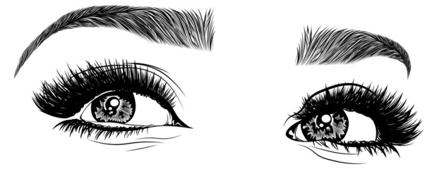 Illustration with woman's eyes, eyelashes and eyebrows. Realistic sexy makeup look. Tattoo design. Logo for brow bar or lash salon.