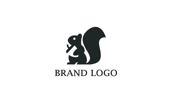 squirrel picture. Squirrel logo design with black and white color, business logo, brand identity