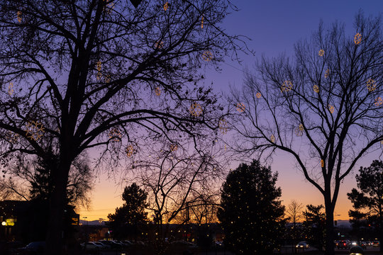 Holiday tree lights in downtown Parker, Colorado at sunset on a clear evening