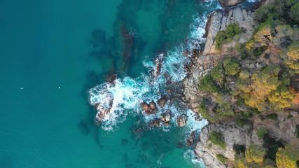 Fototapete - Summer coastline aerial top view